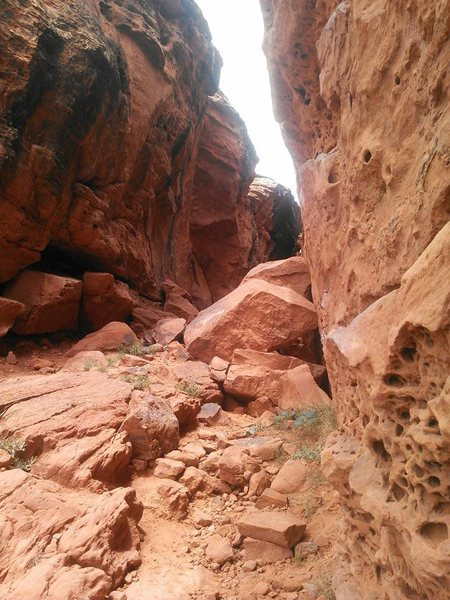 Looking up into the canyon. A couple routes on the left wall offer shade when the sun is out.