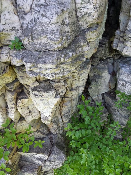 Rock Climbing Photo: Arete under the nose with crack leading up under t...