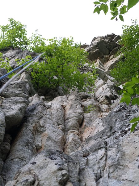 Rock Climbing Photo: Another view from the base of the climb