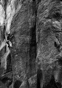 Rock Climbing Photo: Colin cranking on The Black Swan.