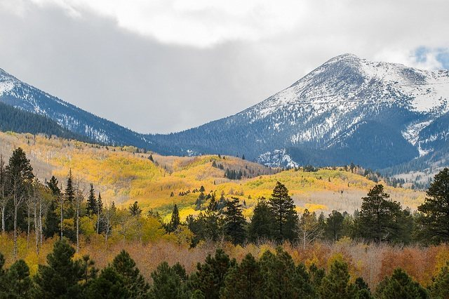Fall in Lockett Meadow.