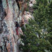 Rock Climbing Photo: Fun roof, even for us shorties.