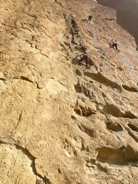 Rock Climbing Photo: After first lead fall...