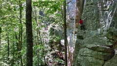 Rock Climbing Photo: Top-roping the fantastic Little Wing