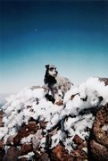 Rock Climbing Photo: Barley on the tippy top, Humphreys Summit, 2006.