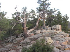 Rock Climbing Photo: Piano Boulders Fort Collins, CO Horsetooth Reservo...