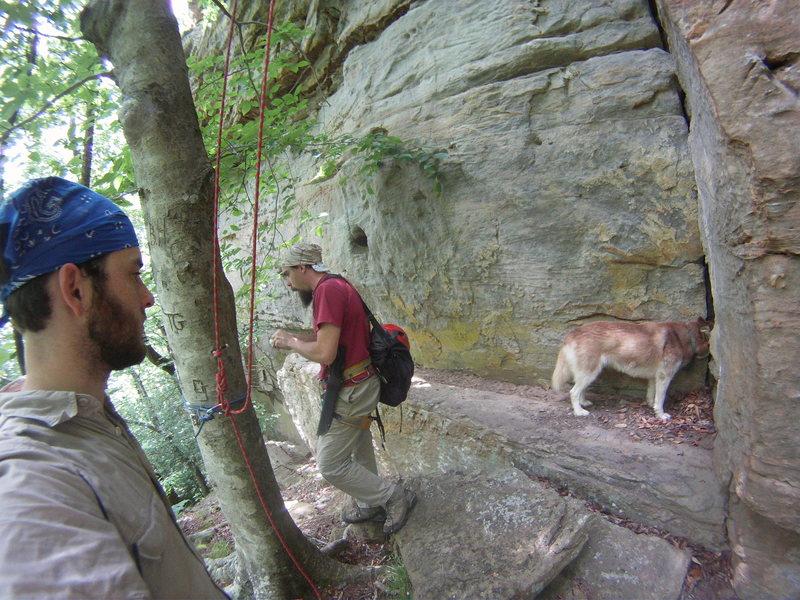 Rock Climbing Photo: View of the bottom