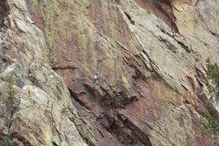 Rock Climbing Photo: Rosy