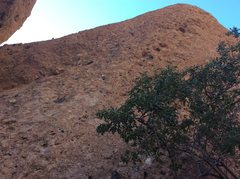 Rock Climbing Photo: Sophie's choice