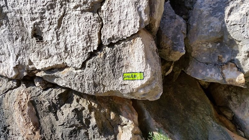 Rock Climbing Photo: Route Plaque