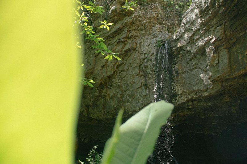 Rock Climbing Photo: Waterfalls and beautiful beech tree's.  Just part ...