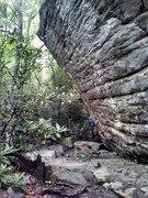 Rock Climbing Photo: Warming up at the wonderful, amazing, unique Summe...