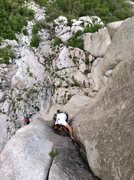 Rock Climbing Photo: Court enjoying the upper less strenuously weird se...
