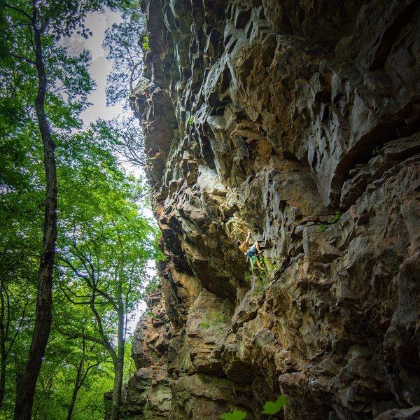 Rock Climbing Photo: The tomb.