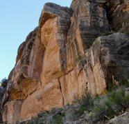 Rock Climbing Photo: The Shady Wall.