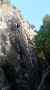 Rock Climbing Photo: Halfway up The Wild wall in Rock Canyon, Provo