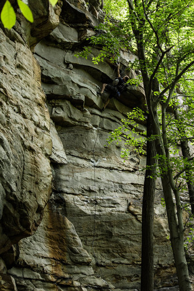 Rock Climbing Photo: Cottonhead. Photo: Tainiko
