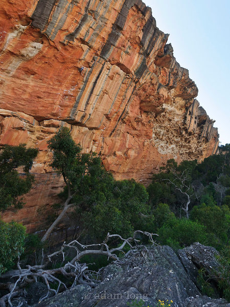 Rock Climbing Photo: T Wall