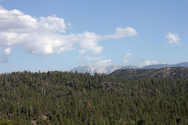 Rock Climbing Photo: Mt. San Gorgonio from the Central Pinnacles, Holco...