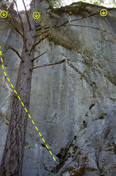 Rock Climbing Photo: dirt
