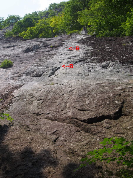 "Rock Climbing Photo: The First Bolts on ""First Shot"""
