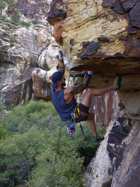 Rock Climbing Photo: Seth moving through the crux on TR