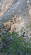 Rock Climbing Photo: This is the line. Not a great pic but ill updat it...