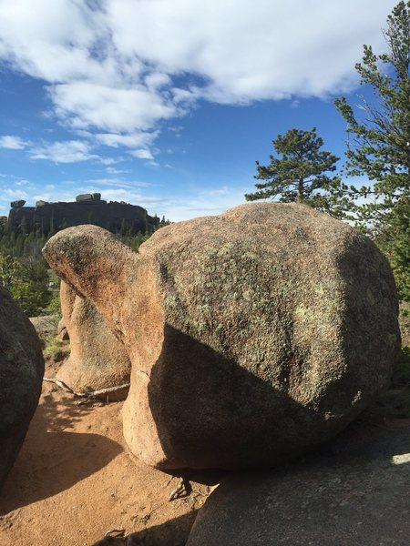 The boulder resembles a turtle.
