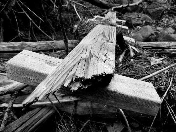 Rock Climbing Photo: Old school bouldering ladder driftwood.... Kelly C...