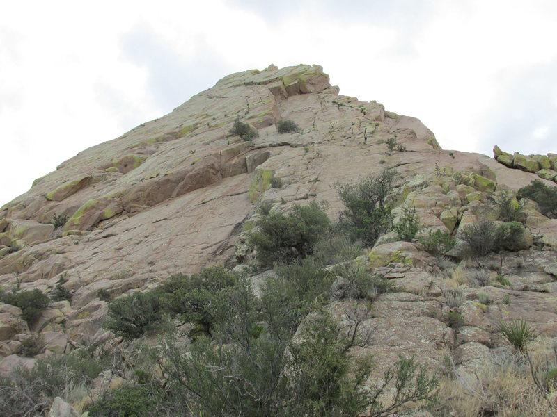 Rock Climbing Photo: Ace's Face.