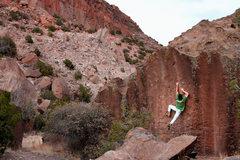 Rock Climbing Photo: Swiss Cheese action shot!