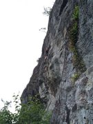Rock Climbing Photo: Alan celebrates finding the no-hands rest in the m...