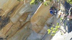 Rock Climbing Photo: p3, 11a