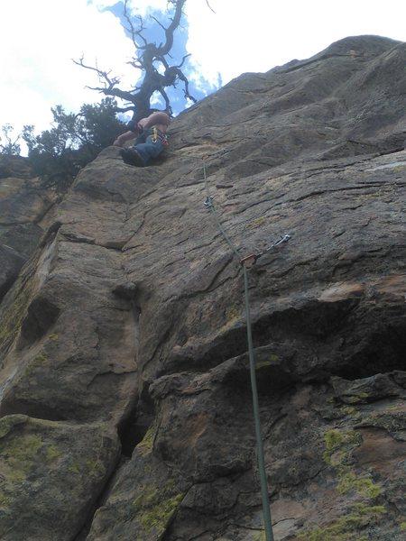 Rock Climbing Photo: Binky.
