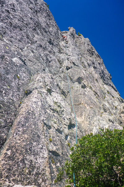 Cosmic Wall, Pitch 5 (out of 6), left variation.