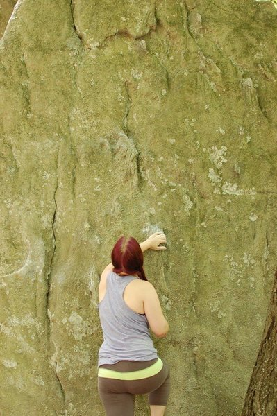 Rock Climbing Photo: the gunks 2