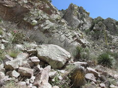 Rock Climbing Photo: Approach goes to the right below the rock on the l...