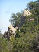 Rock Climbing Photo: Trailside boulders on the trail to Saddle Peak.