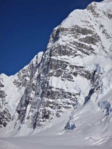 North Buttress, Begguya or Mount Hunter