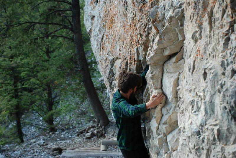 Rock Climbing Photo: Blacktail