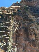 Rock Climbing Photo: Some .10a at Lambs Knoll