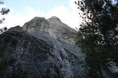 Rock Climbing Photo: Dimitri nearing the top