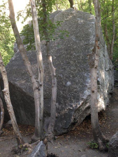 Rock Climbing Photo: Slabmaster