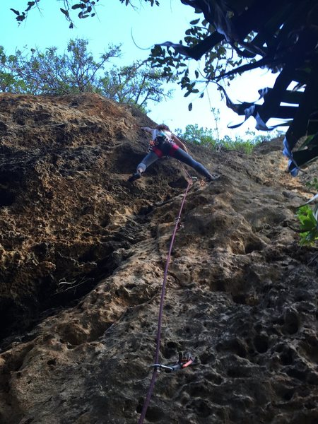 Cindy climbing a ~5.9 at the cave