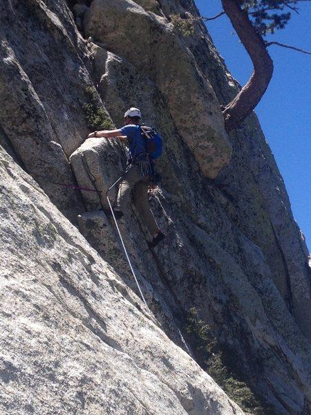 Rock Climbing Photo: J tree pitch on the uneventful