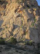 Rock Climbing Photo: Topo of Anything but Sun.