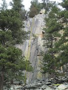 Rock Climbing Photo: Crack is behind tree branch in bottom of photo