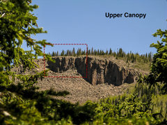 Rock Climbing Photo: Upper Canopy