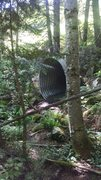 The wildlife tunnel; bring a headlamp!