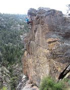 Rock Climbing Photo: Pulling over the bulging dorsal tip.